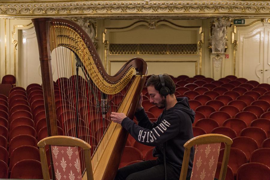 Skwodam recording harp